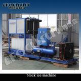 Bloco de gelo de 1000 quilogramas que faz a máquina para a planta pequena