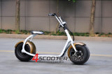 1000W Burshless 2 Wheel Stand up Motor Scooter eléctrico con CE