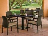 방수 방석 Wf050001를 가진 새로운 옥외 등나무 작은 술집 의자
