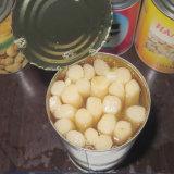 塩水で全370mlによって缶詰にされるアスパラガス