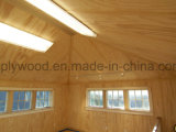 Madera contrachapada Shuttering laminada moldeada de la construcción de la madera contrachapada