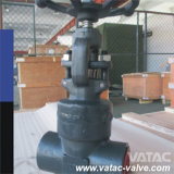 A105 Cl800 Socket Weld / Socket Welding Gate Valve