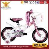 Minigebirgsfahrrad/Kind-Fahrrad/Kind-Fahrrad-/Baby-Spielwaren
