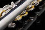 C pied de la Flûte /Modèle débutant /Commerce de gros et la lèvre de la plaque en argent sterling