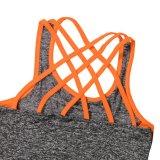 Conjunto de la aptitud de la ropa interior del deporte de las mujeres de la alta calidad para el conjunto de la yoga de las señoras