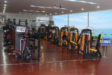 Cuerpo/equipo de la construcción de equipos de gimnasia para mentir T-Bar Fila (FW-2011)