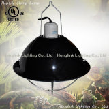 "UL Ce 10 ""Reflector de alumínio Poultry Brooder Lamp for Heating"