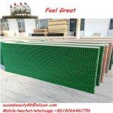 Fabbrica del sistema di raffreddamento di fabbricazione della città di Qingzhou, pollame della fabbrica del sistema di raffreddamento