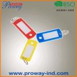 Llaveros de plástico de color con el ID de etiquetas (KT-55)