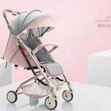 Moderner China-Lieferanten-Baby-Spaziergänger