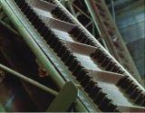 De grote Transportband van Cleated van de Zijwand van het Laadvermogen
