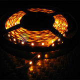 Amber Color 2835 LED Strip 60LEDs / M utilisé sur la décoration