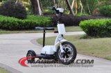 판매에 아이 시트와 아이들 Handbar 스쿠터 Es5013를 가진 고전 3 바퀴 쉬운 라이더 전기 소형 스쿠터