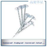 Die beste Qualität galvanisierten Regenschirm-Hut-gewölbten Nägel