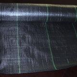 Непосредственно на заводе с сорняками ткань для защиты растений трава ткани