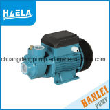 0.5 Serien-einphasig-elektrische Turbulenz-Pumpe Qb60 HP-Qb