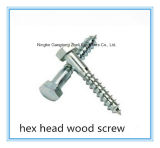 (Aço inoxidável / Aço carbono) Slotted / Cross / Philip Pan / Flat Head Wood Screw