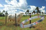 卵形の鋼線を使用してブラジルの農場