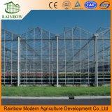 Haut de vente photovoltaïque solaire écologique pour l'Agriculture Produits de serre