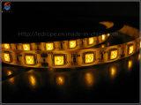 Tira de luz LED de exterior 5050