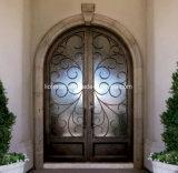 Aquatexの二重窓ガラスのガラス錬鉄の出入口デザイン