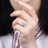 Zirkoon 925 van de Besnoeiing van de prinses Goud Geplateerde Zilveren Ring