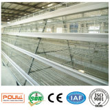 Automatico un tipo gabbia di strato della batteria/gabbia della pollastra/gabbia pollo del pollame