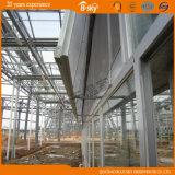 Serre chaude importée par technologie hollandaise en verre de Multi-Envergure