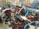 Pistone dell'ISG del motore di Cummins Bfcec (3697697/di 3697698)