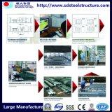Costruzioni di blocco per grafici d'acciaio industriali della costruzione con il disegno moderno