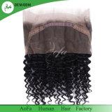 Fabrik liefern das 360 Spitze-Schliessen mit Baby-Haar-voller Spitze-Schutzkappe, brasilianisches Menschenhaar-Stirnbein