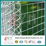 Il foro quadrato ha saldato la rete metallica saldata gabbia del coniglio della rete metallica