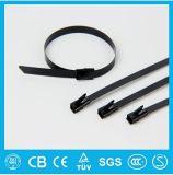 I gruppi della fascetta ferma-cavo dell'acciaio inossidabile del campione libero, PVC hanno ricoperto le fascette ferma-cavo dell'acciaio inossidabile