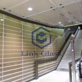 3 - 12 мм Шелкотрафаретная печать / Цветное керамическое закаленное закаленное стекло с AS / NZS2208: 1996, BS6206, сертификат En12150