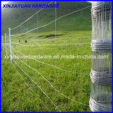 Il bestiame all'ingrosso del metallo recinta la rete fissa di /Farm