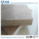 25mm Poplar / Eucalyptus Core Okume / Bintangor / Sapeli Contrachapado comercial para muebles
