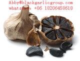 Buon aglio del nero di fermentazione di prezzi di alta qualità