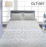 Conjunto de roupa de cama 100% algodão (CLT-001)
