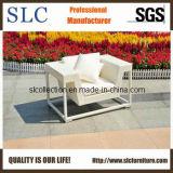 Sofa de rotin/sofa imperméable à l'eau simple de sofa du jardin (SC-9601)