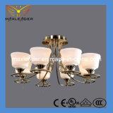 Heißes Beleuchtung CER des Verkaufs-2014, RoHS, UL, Vde-Bescheinigung
