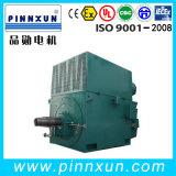 Motor industrial da alta tensão do rotor do enrolamento do moedor/Polishing/Planer