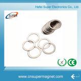 Magnete permanente all'ingrosso del neodimio dell'anello del motore