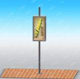 Rectángulo ligero de Adversting del poste al aire libre de la lámpara