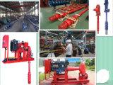 Serien-vertikale Turbine-Wasser-Pumpe Langspielplatte-(T)