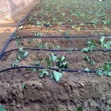 PE сельскохозяйственных систем капельного орошения с круглыми Drippers трубопровода