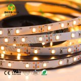 2835 DC 12V Non-Waterproof interior 60 LEDs/M Fita LED flexível