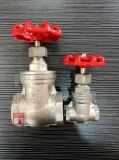 Forged Stainless Steel Thread BW gate valve