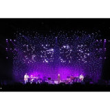 [110-220ف] جهد فلطيّ و [سبسل وكّسون] عطلة اسم [لد] [توينكلينغ] نجوم [لد] ستار أضواء