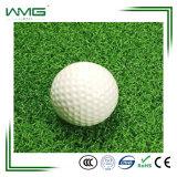 كرة مضرب عشب اصطناعيّة يوضع على كرة مضرب مجال