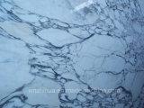 Mattonelle di marmo di lusso di marmo bianche italiane di Arabescato delle mattonelle di pavimentazione di Arabescato